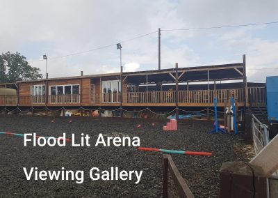 flood lit arena and viewing gallary